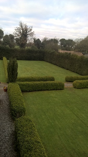 Green Lawns and Box Hedging. Irish Yew too.