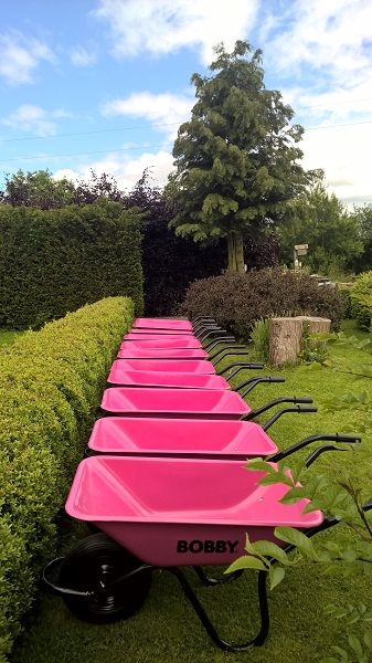 Pink wheelbarrows awaiting the Hen Party in Ireland